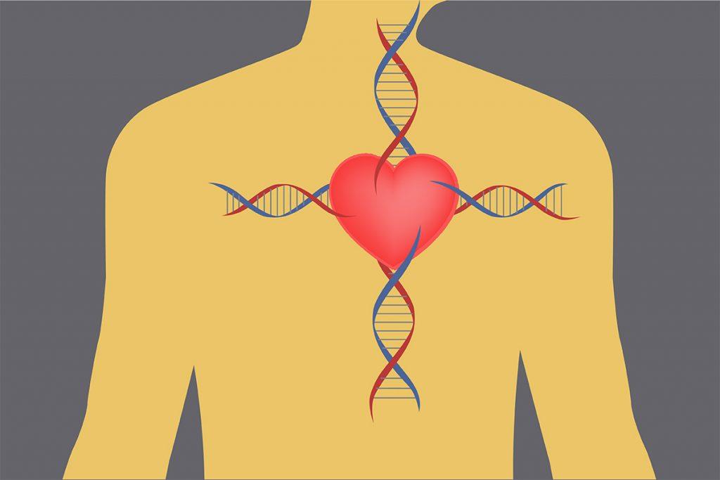 کشف ژن عامل ایست قلبی ناگهانی در جوانان